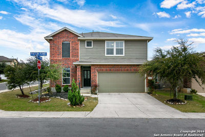 San Antonio Single Family Home New: 12139 Patton Pt