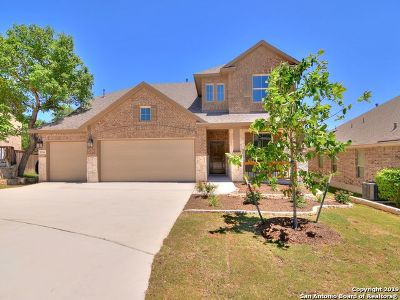 San Antonio Single Family Home New: 28934 Diana Falls