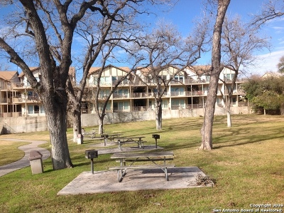New Braunfels Condo/Townhouse New: 730 E Mather St #202