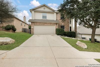 San Antonio Single Family Home New: 15110 Stonetower Dr