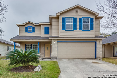 San Antonio Single Family Home New: 4023 Wisteria Way