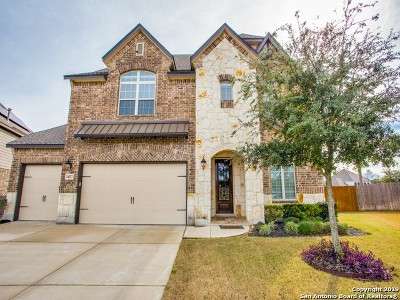 San Antonio Single Family Home New: 24527 Merlot Way
