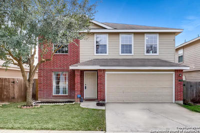 San Antonio Single Family Home New: 7334 Blazar Way