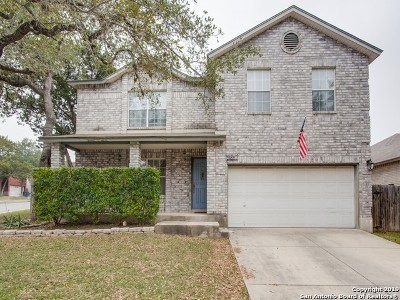 San Antonio Single Family Home New: 9227 Shadystone Dr