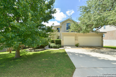 Helotes Single Family Home New: 15019 Rio Rancho Way