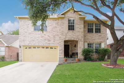 San Antonio Single Family Home New: 1314 Canyon Parke Dr