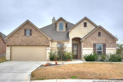 Boerne Single Family Home New: 27002 Smokey Chase