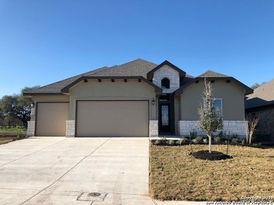Cibolo Single Family Home New: 229 Kilkenny