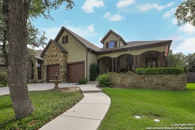 Boerne Single Family Home New: 28010 Vine Cliff