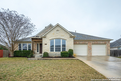 New Braunfels Single Family Home New: 1944 Oak Glen