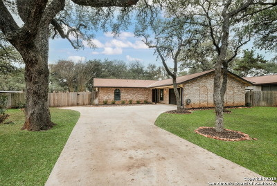 San Antonio Single Family Home New: 17209 Bucher Lane