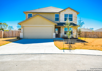 San Antonio Single Family Home New: 10702 Spirit Roam