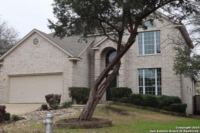 San Antonio TX Single Family Home New: $326,900
