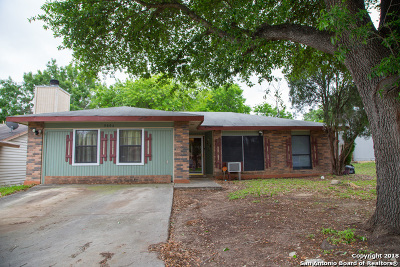 Single Family Home For Sale: 9806 Cascade Valley St