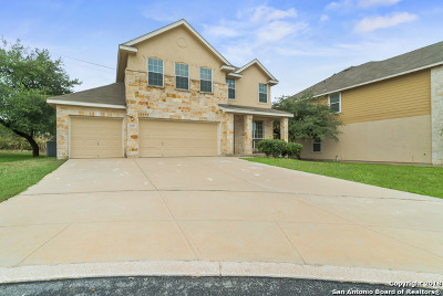 San Antonio Single Family Home New: 25607 Weigela