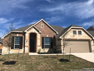 San Antonio TX Single Family Home Back on Market: $344,499