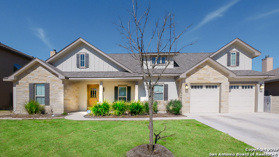 Boerne Single Family Home New: 134 Bird Song