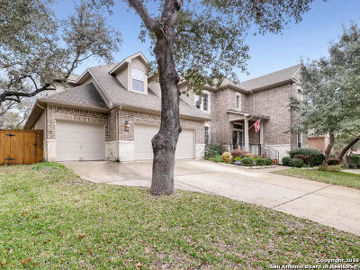San Antonio Single Family Home New: 125 Yaupon Trail