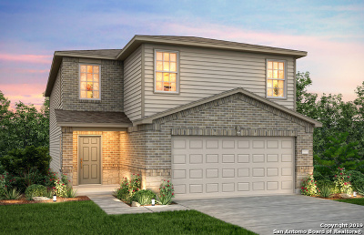 San Antonio Single Family Home New: 9602 Silver Mist Wasy