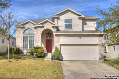 San Antonio Single Family Home New: 9907 Moffitt Dr