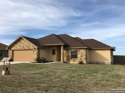 Pleasanton Single Family Home New: 1828 Vista View Dr