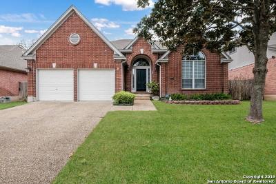 San Antonio TX Single Family Home New: $335,000