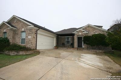 San Antonio TX Single Family Home New: $254,000