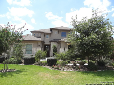 San Antonio TX Single Family Home New: $465,000