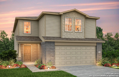 San Antonio Single Family Home New: 12016 Silver Lining
