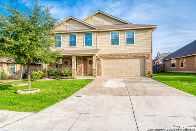 New Braunfels Single Family Home New: 2739 Cinnamon Teal