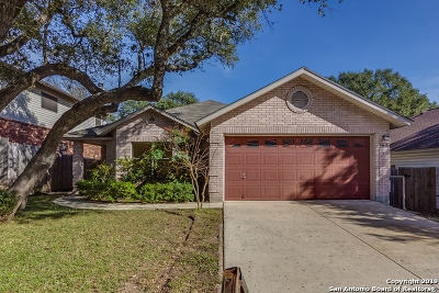 San Antonio Single Family Home New: 10426 Goldstone Dr