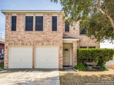 San Antonio TX Single Family Home New: $302,500
