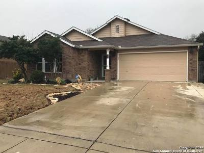 New Braunfels Single Family Home New: 2852 Seascape Ln