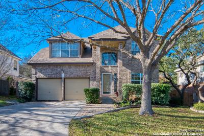 San Antonio Single Family Home New: 25019 Arrow Ridge