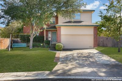 San Antonio Single Family Home New: 5414 Stormy Skies