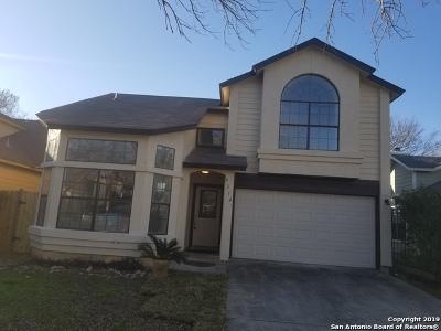 San Antonio Single Family Home New: 9314 Valley Hedge