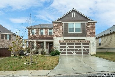 San Antonio Single Family Home New: 1343 Big Lk