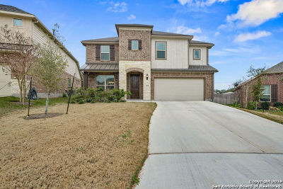 Bexar County Single Family Home New: 13038 Sweet Emily