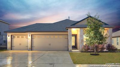 New Braunfels TX Single Family Home New: $250,000
