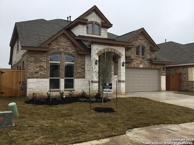 San Antonio Single Family Home New: 8843 Pinto Canyon