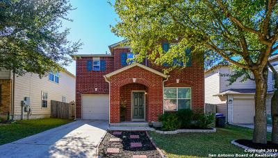 San Antonio Single Family Home New: 16115 Ambush Grove
