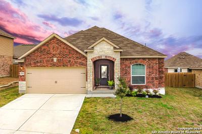 New Braunfels TX Single Family Home New: $230,900