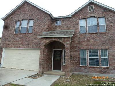 Converse Single Family Home New: 8551 Cherokee Ridge