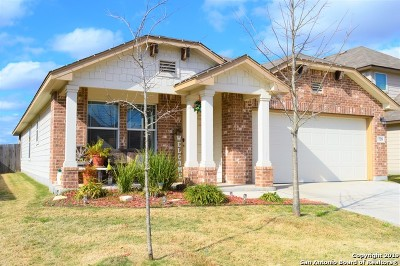 New Braunfels Single Family Home New: 739 Spectrum Dr