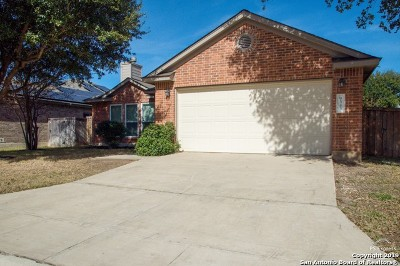 Helotes Single Family Home New: 9343 Grand Cedar
