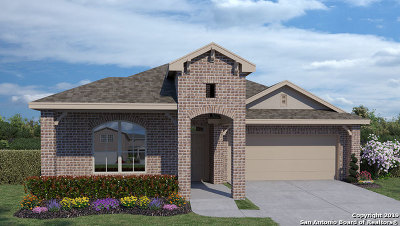 New Braunfels Single Family Home New: 370 Lost Maples