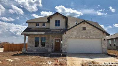 New Braunfels Single Family Home New: 319 Walnut Creek