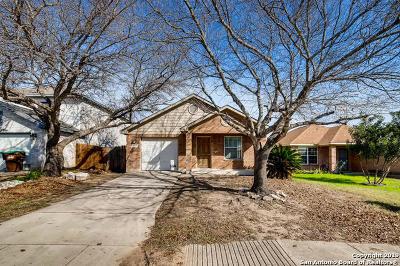 San Antonio Single Family Home New: 10719 Judie Allen