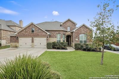 San Antonio Single Family Home New: 8718 Silver Rock