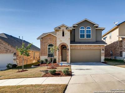 San Antonio Single Family Home New: 5727 McKinney Falls
